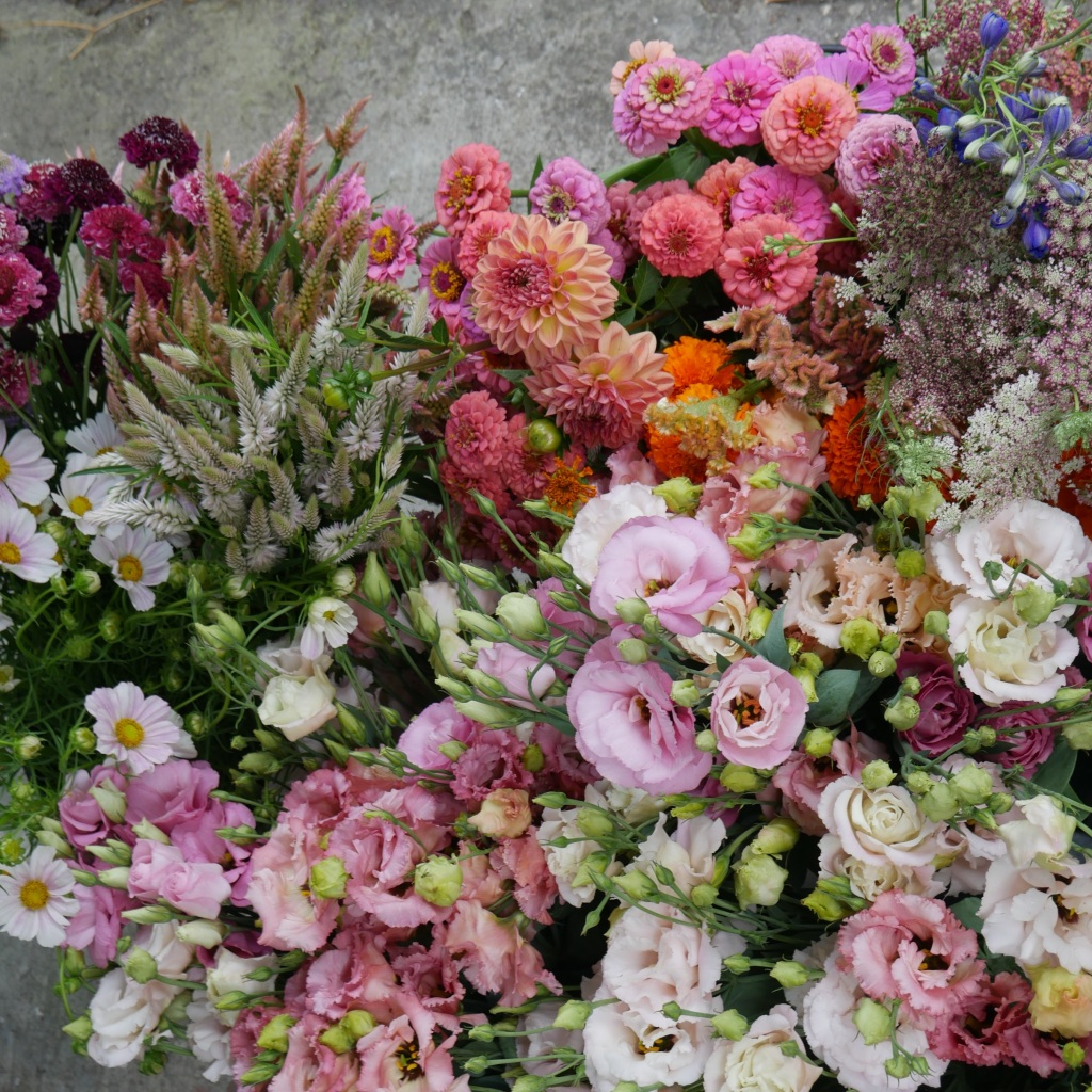 buckets of cut floweres